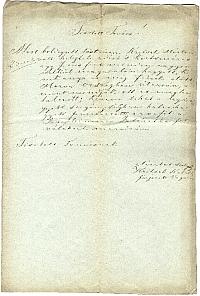 Kritsek Márton kocsmáros fiának árvává nyilvánítása, 1848