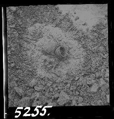 Negatív, ásatás, Bakonyjákó