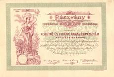 A Csermő- és Vidéke Takarékpénztár Rt. részvénye 100 koronáról