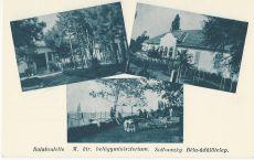 Scitovszky Béla-üdülőtelep, Balatonlelle