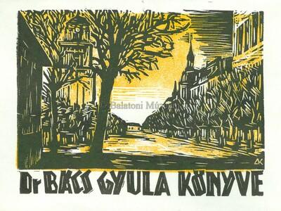 Dr. Bács Gyula könyve