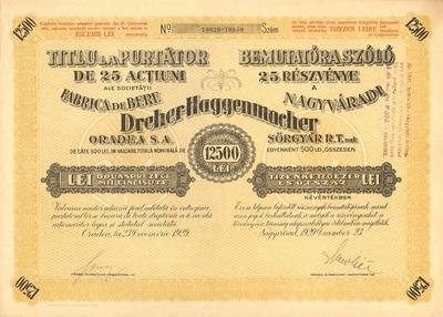 A Nagyváradi Dreher-Haggenmacher Sörgyár Rt. összevont részvénye 12500 lei értékben
