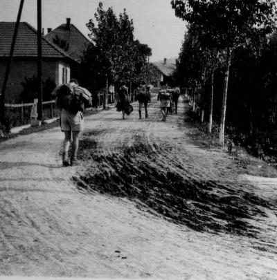 Alsó-hegyi tábor, 1957
