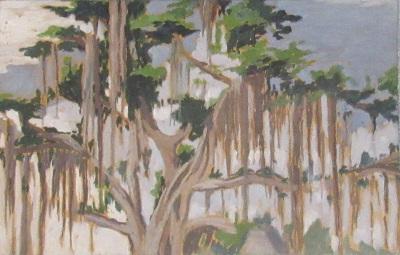 Tanulmány egy ősi léggyökeres fáról a Moodherai nagytemplom mellett