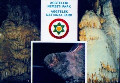 Baradla-barlang, Földvári-barlang