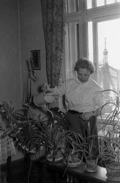 Növényt öntöző hölgy a Belgrád rakparti lakásában