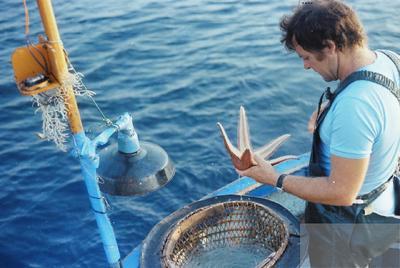 Fonds Henri-Paul Brémondy : Etoile de mer prise dans un palangre - Photographie en lien avec le corpus sonore La pêche traditionnelle varoise dans les années 1970