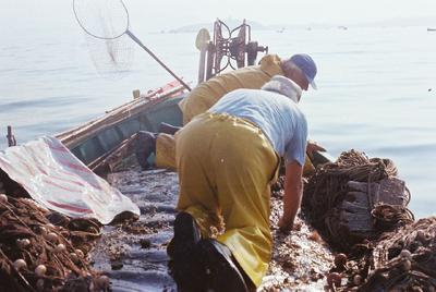 Fonds Henri-Paul Brémondy : Pêcheurs à genoux sur un bateau - Photographie en lien avec le corpus sonore La pêche traditionnelle varoise dans les années 1970