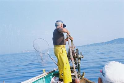 Fonds Henri-Paul Brémondy : Un pêcheur remonte un poisson dans le filet - Photographie en lien avec le corpus sonore La pêche traditionnelle varoise dans les années 1970