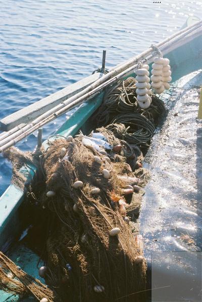 Fonds Henri-Paul Brémondy : Filets sur un bateau de pêche - Photographie en lien avec le corpus sonore La pêche traditionnelle varoise dans les années 1970