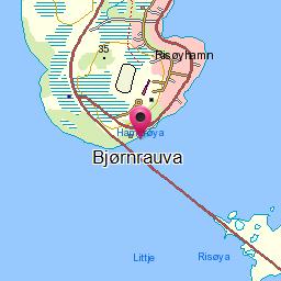 Bjørnrauva