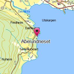 Abelundneset