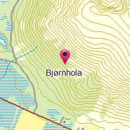Bjørnhola