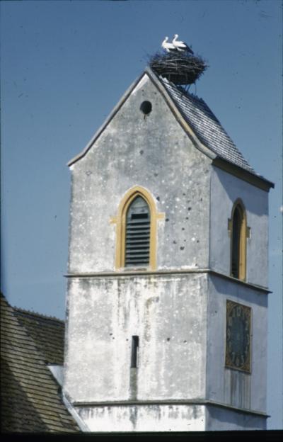 Allschwil, Kirchturm mit Storchennest