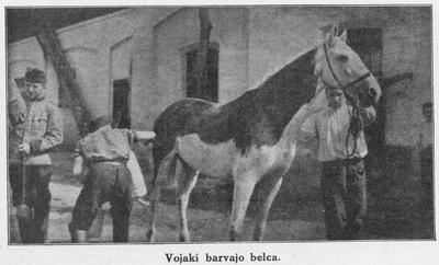 Ilustrirani glasnik 1914 Vojaki barvajo belca
