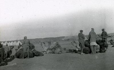 Shallufa moving camp