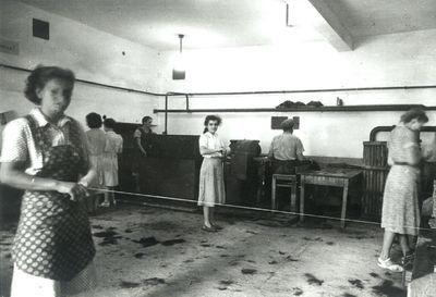 Delavke v Ščetinarni slikane pred letom 1960