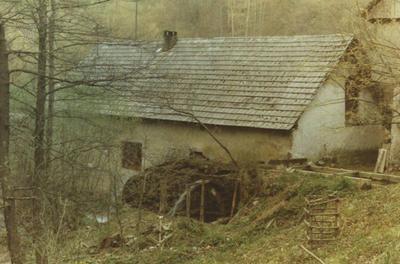 Mlin v Mirni vasi