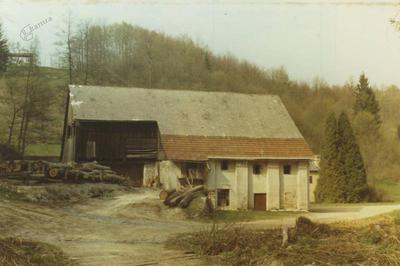 Žaga v Mirni vasi