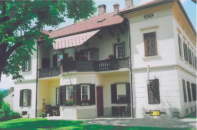 Goričarjeva – Zvirova hiša v Mozirju