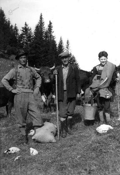 Na Stamarah po 1950