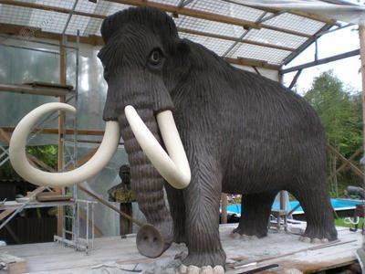 Kip mamuta