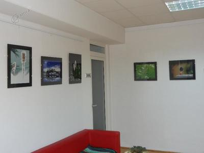 Fotografska razstava Marjetke Erman