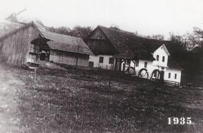 Trokolesni vodni mlin na Bistrici pri Šentrupertu leta 1935