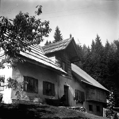 Kajžnikova domačija (ok. 1965)