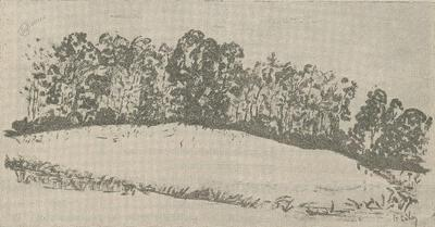 Kastelišče na Tišini