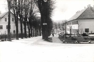Lipov drevored ob Kolodvorski ulici