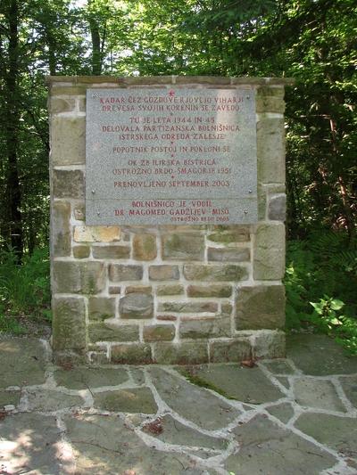 Lokacija bolnice s spomenikom