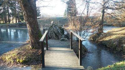 Skalnjak v ribniku
