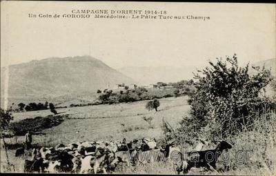 Campagne d' Orient 1914-18. Un coin de Goroko (Macédoine) - Le Pâtre Turc aux Champs.