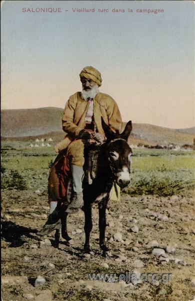 Salonique - Vieillard turc dans la campagne.