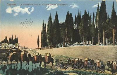 Smyrne. Le cimetière Turc et Caravanne de Chameaux.