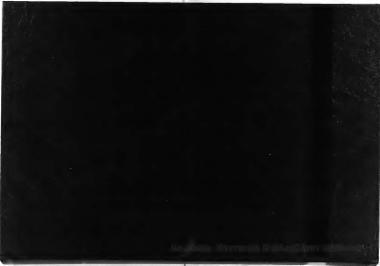 Κερκίδα, 2007[εφημερίδα]