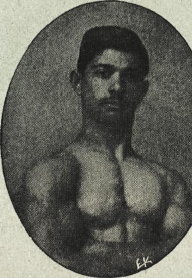 Αλιπραντής Νικόλαος