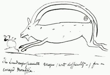 Σατιρικό σκίτσο του Edward Lear στο οποίο αγριοπρόβατο καταδιώκει τον καλλιτέχνη.