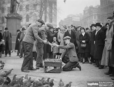 Keeping down London's pigeon population._x000D_ Catchers