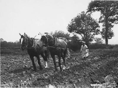 Ridge Ploughing