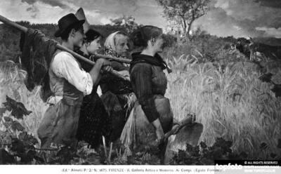 In the Fields, by Egisto