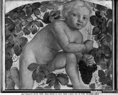 Child kneeling under a grape