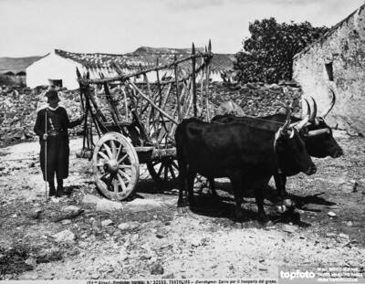 Cart for transporting grain, pulled