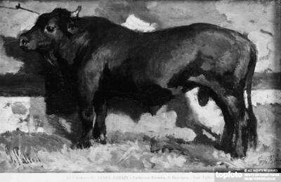 The Black Bull, painting by