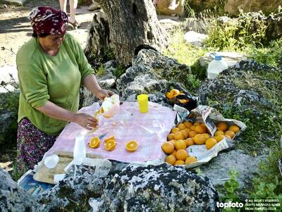 Woman squeezing oranges to sell