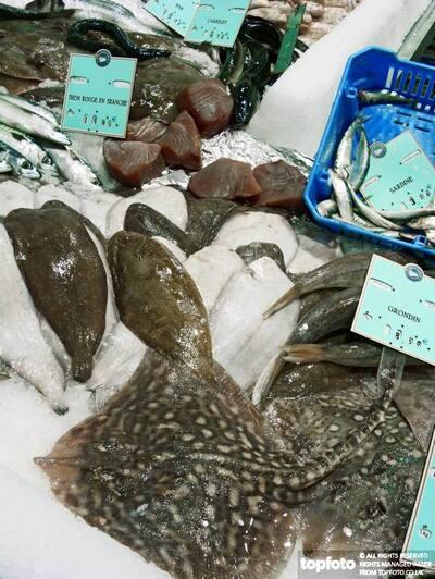 Supermarket fish