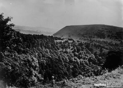 A Derbyshire Wood ._x000D_ A view