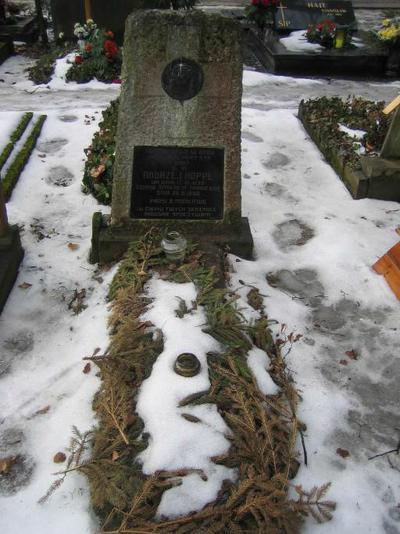 Poznański Czerwiec 1956 r. - Andrzej Hoppe - fotografia grobu z 2006 r.