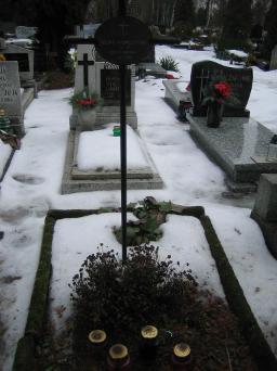 Poznański Czerwiec 1956 r. - Feliks Niemczewski - fotografia grobu z 2006 r.